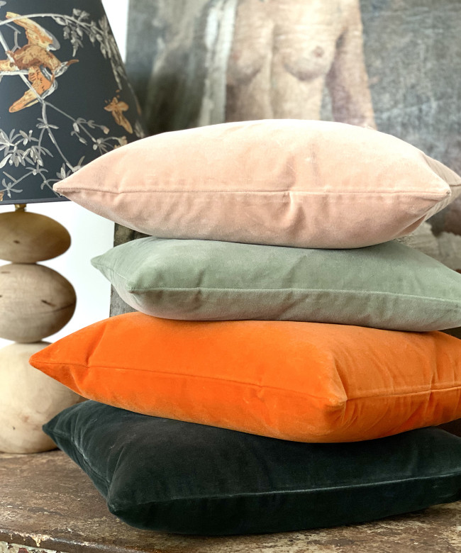 dove velvet cushion